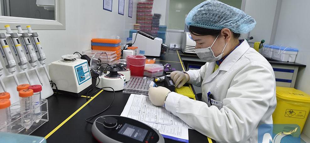 ENFOQUE: Enfermedad de Alzheimer puede empezar en útero, descubre estudio canadiense-chino